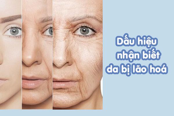 Dấu hiệu nhận biết làn da bị lão hoá