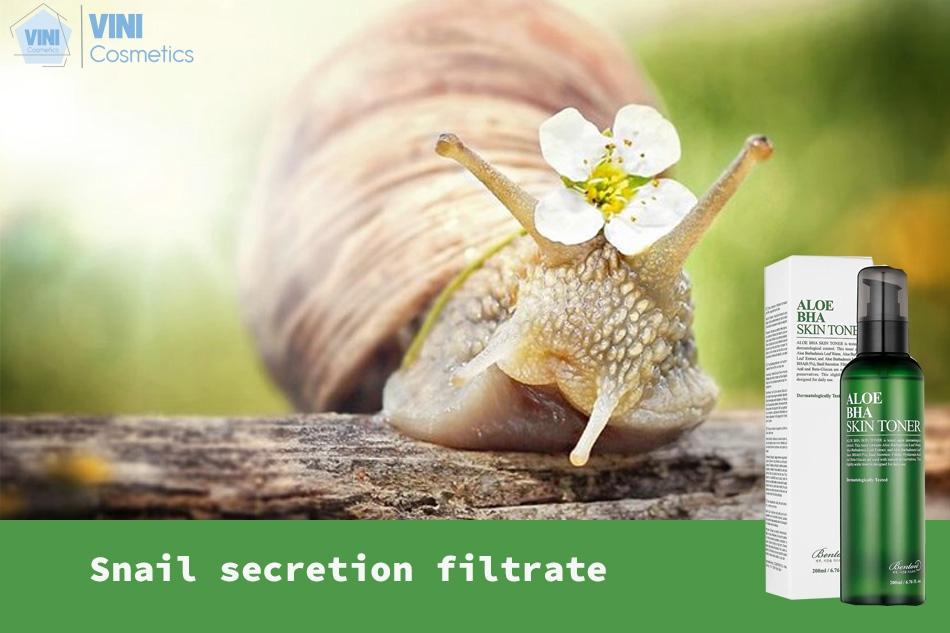 Snail secretion filtrate (có trong dịch nhầy của ốc sên)
